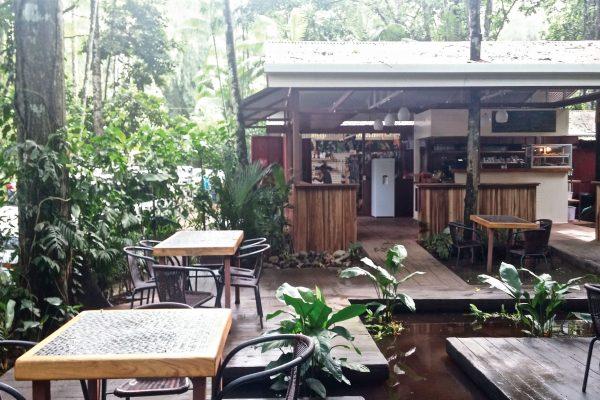 Café du Jaguar Rescue Center
